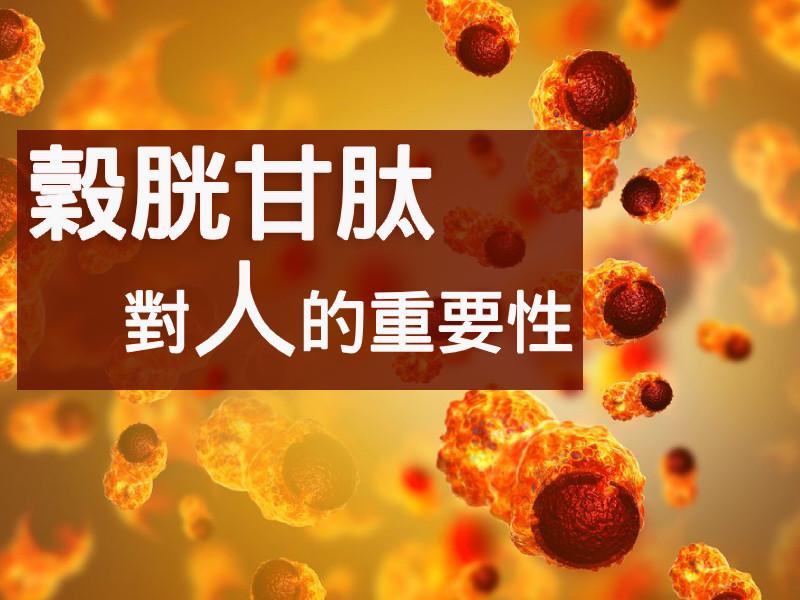 穀胱甘肽對人的重要性!