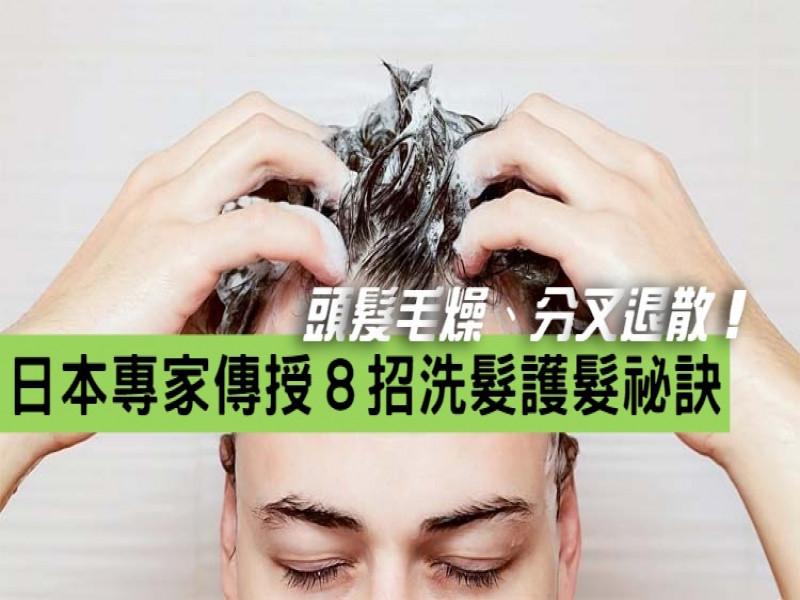 頭髮毛燥、分叉退散!日本專家傳授8招洗頭護髮祕訣