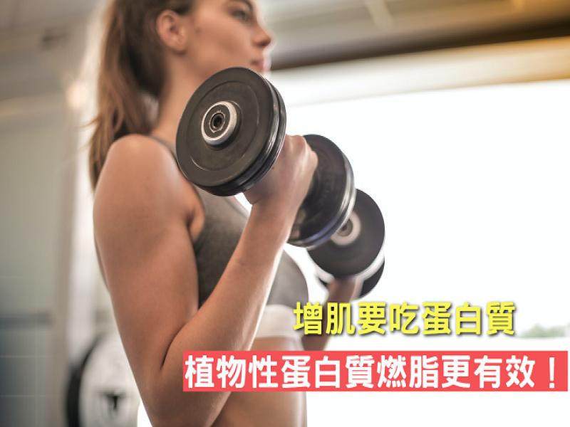 增肌要吃蛋白質,植物性蛋白質燃脂更有效!