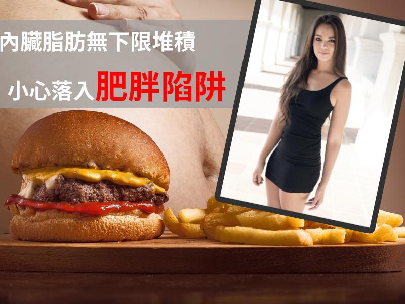 內臟脂肪無下限推積,小心落入肥胖陷阱!